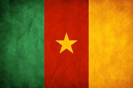 الانصار بالسينغال ونيجيريا