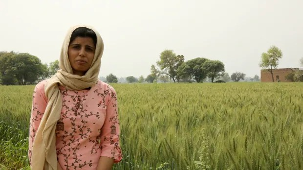 Burdened by debt and unable to eke out a living, many farmers in India turn to suicide