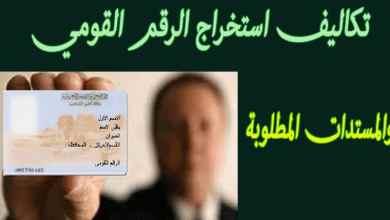 طريقة وتكاليف الحصول على بطاقة الهوية الوطنية منتهية الصلاحية عبر الإنترنت بشكل عاجل