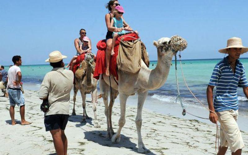 """تراجع السياح الأجانب في 2016 ينذر بحصيلة كارثية للمخطط العشري: """"رؤية 2020"""" .. هل وقف حمار الشيخ في العقبة؟"""