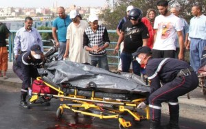 مقتل 3593 في طرقات المغرب خلال سنة 2016