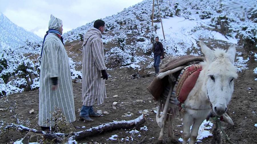 الحكومة تحارب 'البرد القاتل' بـ'رعاية' وتتوجه إلى المناطق المتضررة في 28 إقليمًا