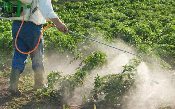 'أونسا' يكشف حقيقة دخول مبيدات زراعية غير مرخصة من أوروبا إلى المغرب