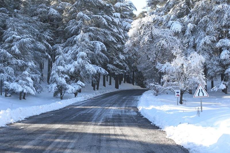 طقس الأربعاء | أجواء باردة على العموم مع نزول أمطار وثلوج بهذه المناطق