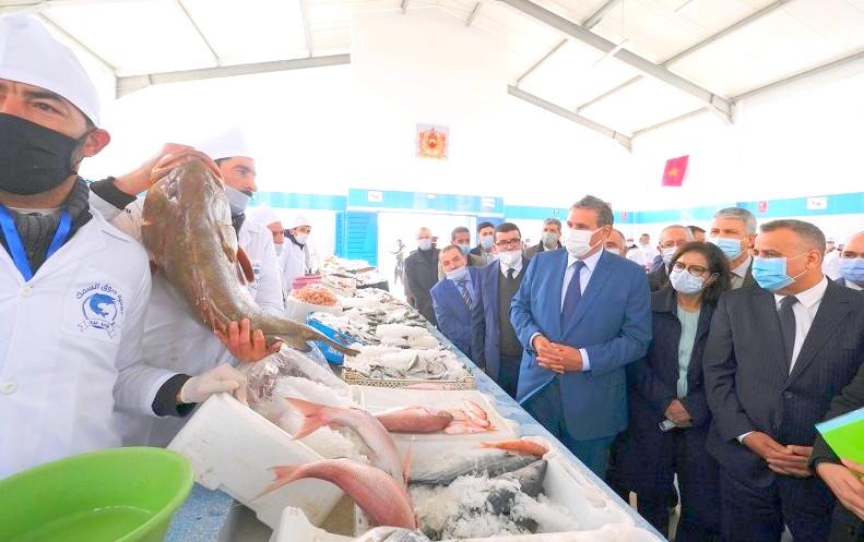 شفشاون. أخنوش يدشن سوقًا للسمك ويطلع على مشاريع 'المغرب الأخضر'