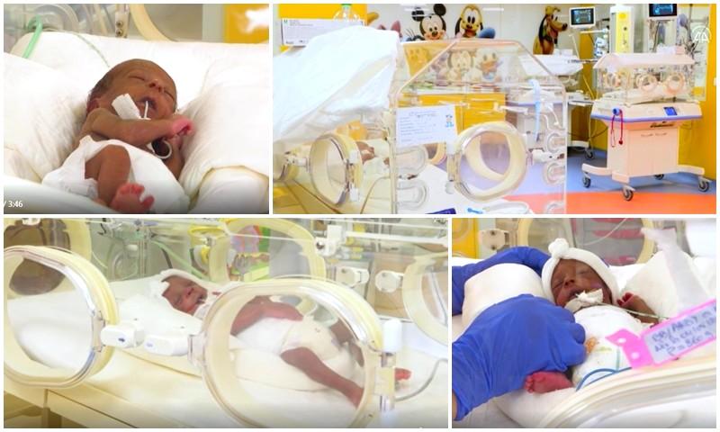 فيديو. من 'فطومة' إلى 'عمر'.. هذه حالة الأم 'حليمة' وتوائمها التسعة بعد شهر من ولادتهم