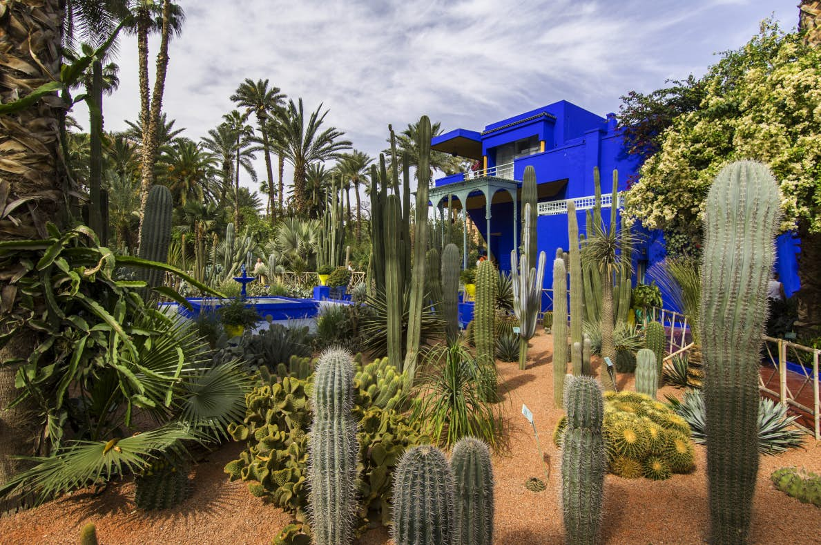 حدائق ماجوريل بمراكش تفتح أبوابها لمسوقي المنتوجات الفلاحية 'البيو'