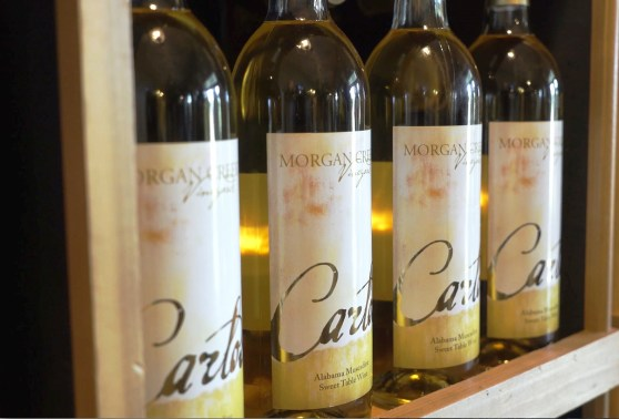 Carlos, Morgan Creek Vineyards' white, sweet muscadine wine, is its signature label. (Chad Allen / Alabama NewsCenter)