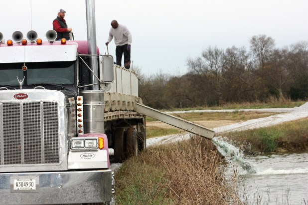 A truck restocks a catfish pond. (Robert DeWitt / Alabama NewsCenter)