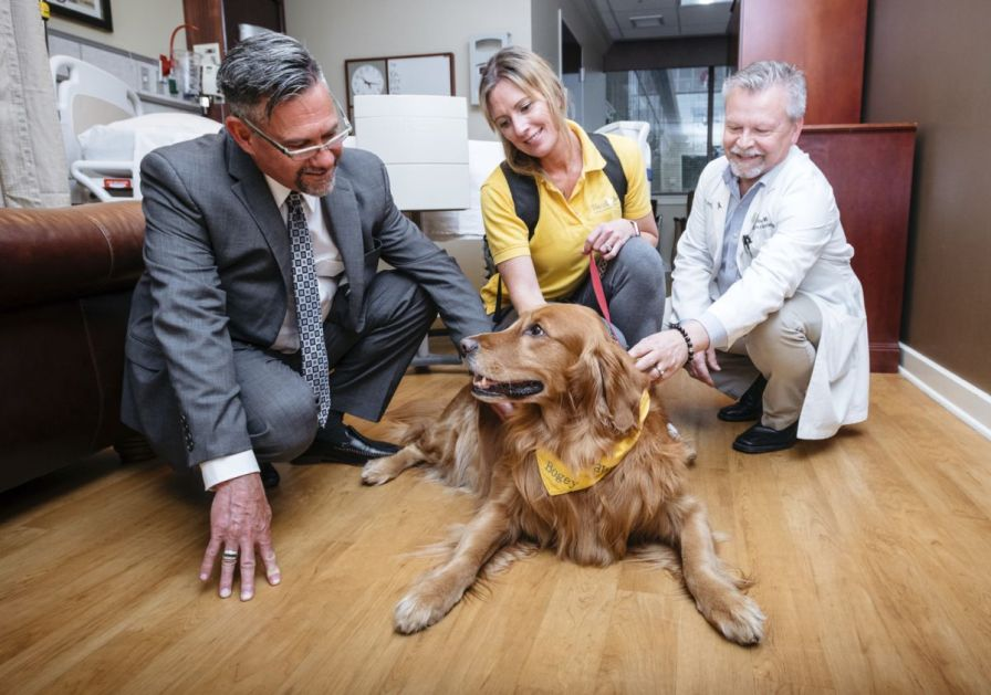 Assisting with the therapy dog program has brought solace to pet owners Tucker and Billy Connelley (left), who lost their beloved Shih Tzu puppy, Anna. Schaffer enjoys volunteering with the pet-therapy program and sharing Bogey with patients. (Holly Gainer/UAB)