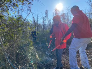 Magic City APSO members joined Friends of Moss Rock Preserve in Hoover to clean up and remove invasive plants along walking trails. (Erin Harney / Alabama NewsCenter)