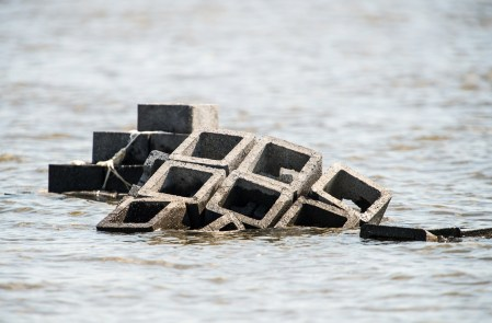 Blocks placed in the water of Mobile Bay are part of efforts to restore oyster habitat. (Alabama Power Foundation)