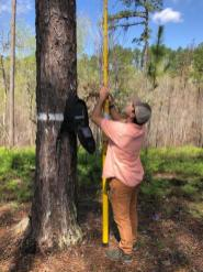 Alabama Power biologists work to improve wildlife habitats both in the water and on dry land at Alabama Power lakes. (contributed)