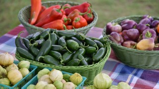 Sweet Grown Alabama makes extra effort for farmers during COVID-19 crisis