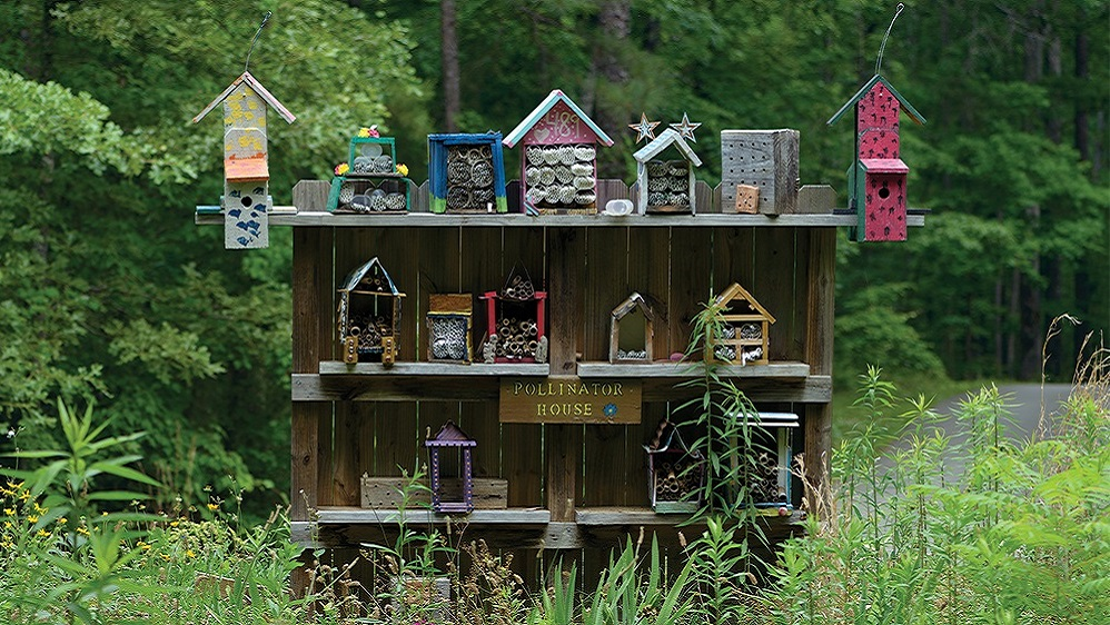 Dream homes for pollinators: Welcome beneficial insects to your neighborhood