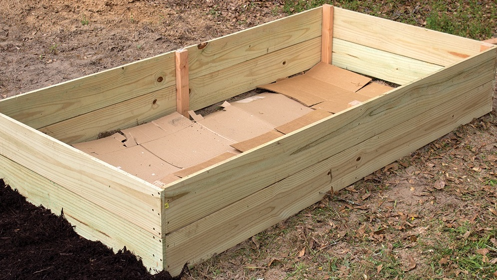 Build a raised bed for a more accessible, productive garden