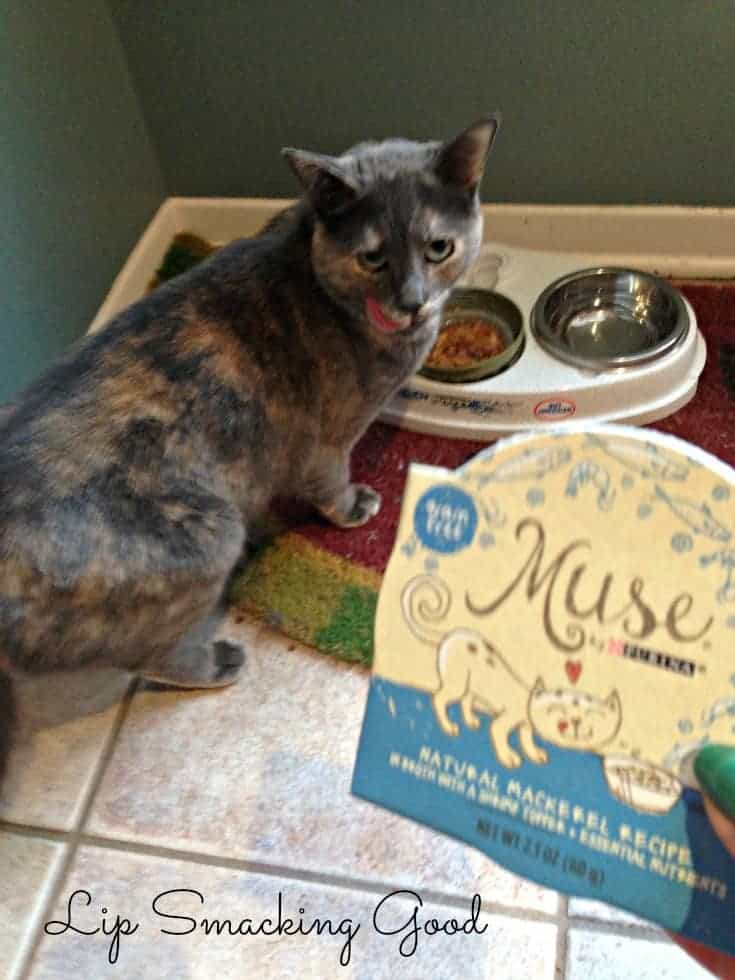 Lou loves purina muse
