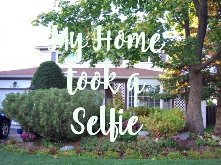 My home took the HomeSelfe App