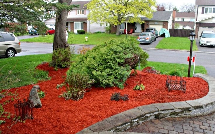 front yard renovations with red cedar mulch and a new garden wall