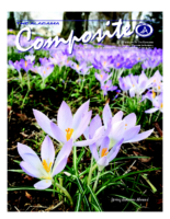 2017 Issue 1 – Spring