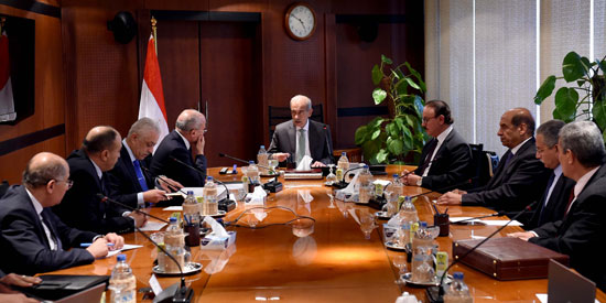 رئيس الوزراء يبحث تطوير شركتى المصرية والجمهورية للأدوية