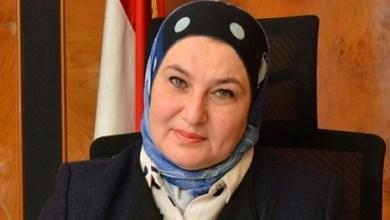 Photo of رئيس بنك تنمية الصادرات: نواصل دعم القطاع الصحي وتطوير القرى الأقل حظاً