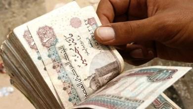 Photo of محافظة الجيزة تعلن عن فرص عمل للشباب برواتب تصل لـ5000 جنيه