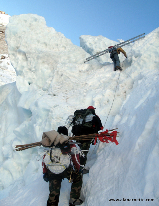 The Doctors taking ladders into the Khumbu Icefall
