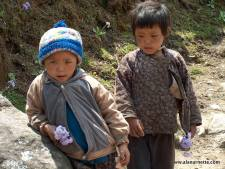 Passing out flowers to the trekkers in the Khumbu