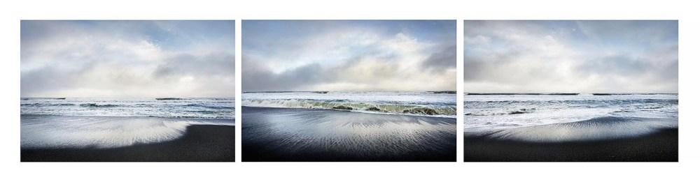 Gold Bluffs Beach, Prairie Creek Redwoods State Park Artist Statement & Bio