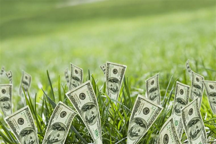 Bonde fick bidrag för odling av sin gräsmatta
