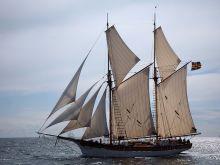 Skeppet Albanus till segels