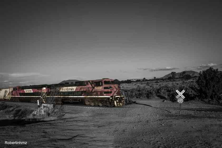Ferrocarril de Ferromex en movimiento.