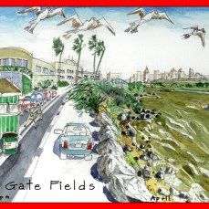 6_Goldengate_Fields_South