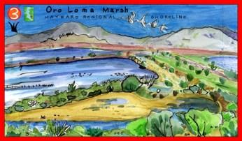 Oro_Loma_Marsh_Red
