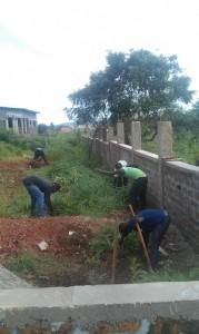 planting inside wall