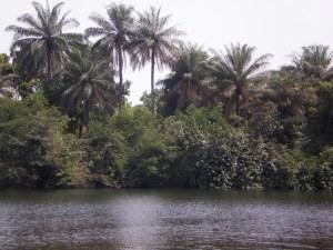 Batfon river 2