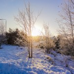 Winter was drier, sunnier and warmer than usual
