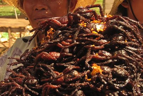 tarantulas-fritas-camboya2