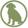 Adopt_Dog