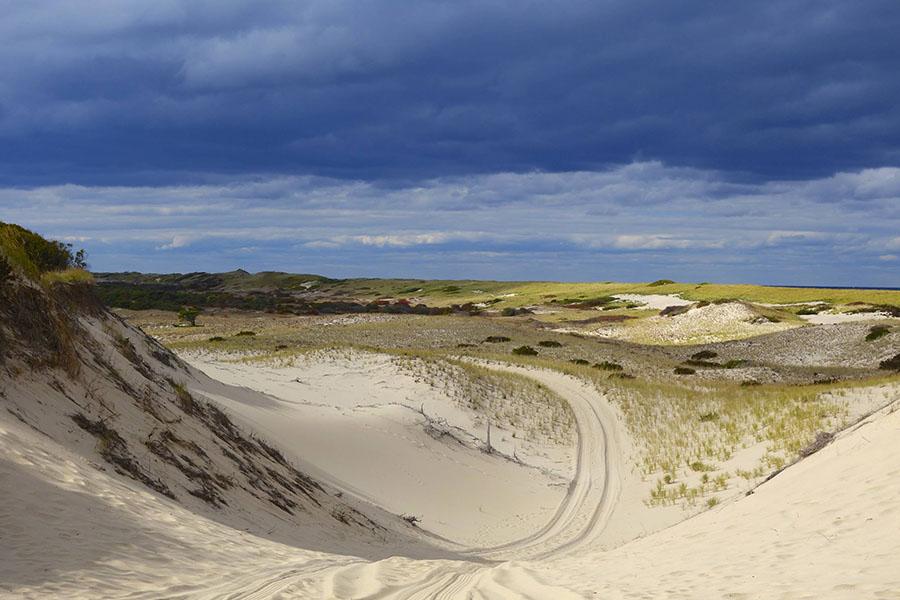 alashan viaggi verona - dune