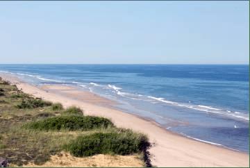 alashan viaggi verona - spiaggia di Cape Cod