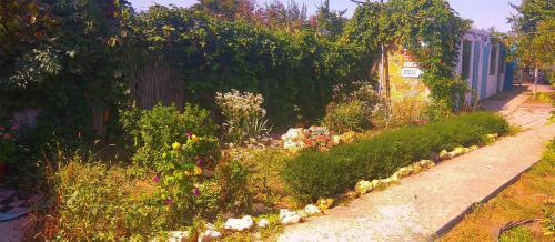 гостевой двор камышовая бухта (10)