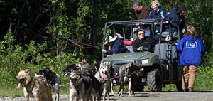 Sled dog kennel tour