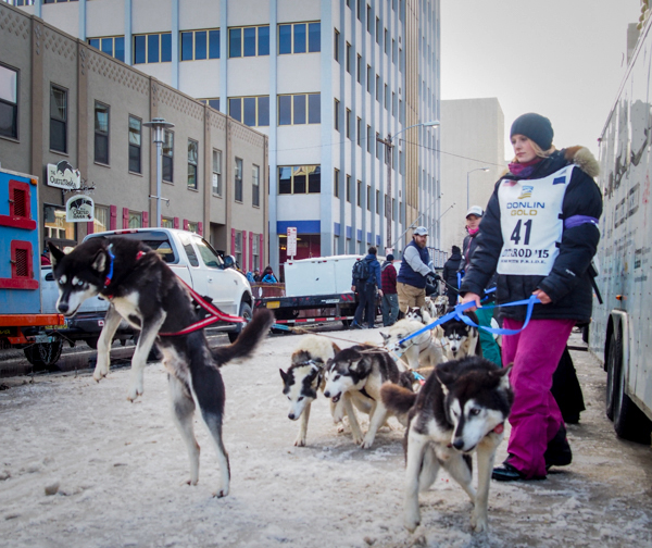 Iditarod Mushers Prepare For New Route Through Interior Alaska     Iditarod Mushers Prepare For New Route Through Interior Alaska