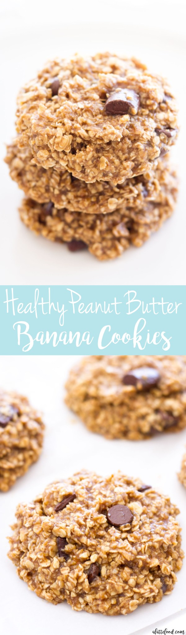 These healthy peanut butter banana cookies are full of oats, peanut butter, and sweet chocolate chunks! With no flour or butter in these cookies, these peanut butter banana cookies are a guilt-free dessert!