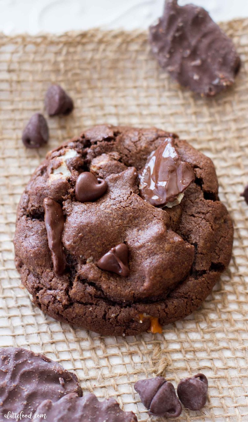 This easy sweet and salty double chocolate chip cookie recipe is THE cookie for any chocolate dessert lovers! These rich (double) chocolate chip cookies are full of chocolate chips, chocolate covered potato chips, and salty pretzels! Salty and sweet at its finest.