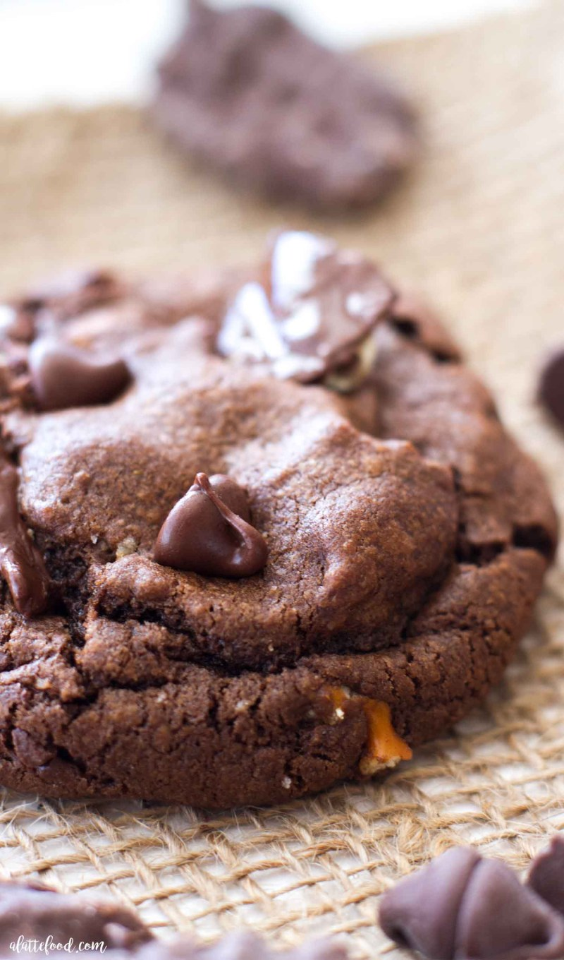 If you love sweet and salty, you're going to love these double chocolate potato chip cookies!