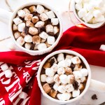 hot chocolate with marshmallows and cocoa powder in white sweater mugs