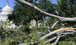 ABD'yi fırtına vurdu: 12 ölü